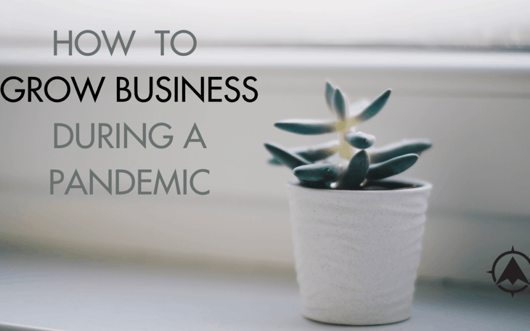 How to Grow Business During a Pandemic